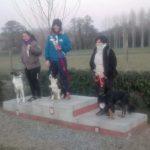 FB_IMG_1546838421414